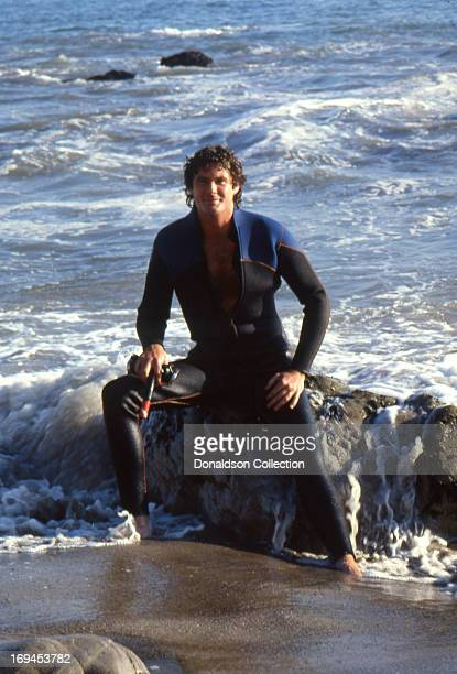 Actor David Hasselhoff poses for a portrait session wearing a wet suit on the beach in 1981 in Los Angeles California