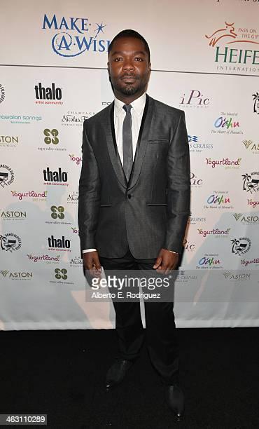 Actor David Oyelowo attends 19th Annual Critics' Choice Movie Awards at Barker Hangar on January 16 2014 in Santa Monica California