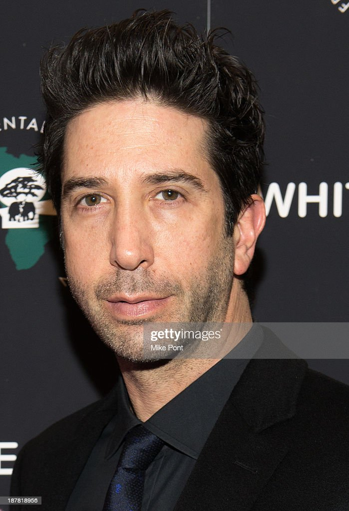 Actor <a gi-track='captionPersonalityLinkClicked' href=/galleries/search?phrase=David+Schwimmer&family=editorial&specificpeople=206148 ng-click='$event.stopPropagation()'>David Schwimmer</a> attends a special screening of 'White Gold' at the Museum of Modern Art on November 12, 2013 in New York City.