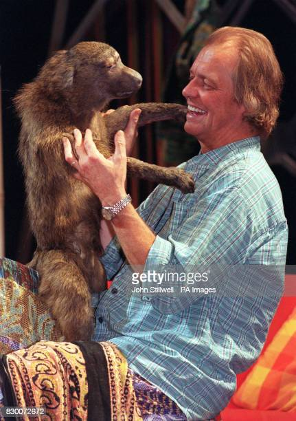 Actor David Soul plays with the silent 'star' of his new play 'The Dead Monkey' which premieres at London's Whitehall Theatre from 29th September The...
