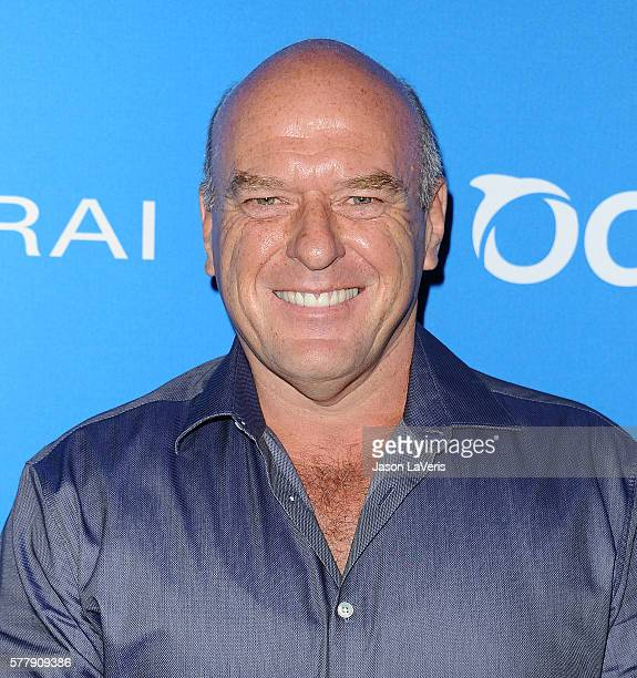 Actor Dean Norris attends Oceana Sting Under the Stars on July 18 2016 in Los Angeles California