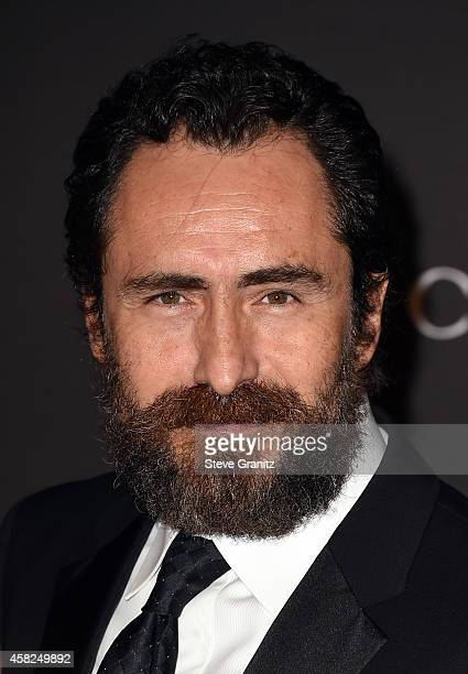Actor Demian Bichir attends the 2014 LACMA Art Film Gala honoring Barbara Kruger and Quentin Tarantino presented by Gucci at LACMA on November 1 2014...