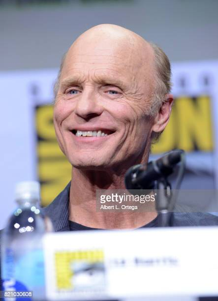 Actor Ed Harris attends the 'Westworld' panel and QA Session during ComicCon International 2017 at San Diego Convention Center on July 22 2017 in San...