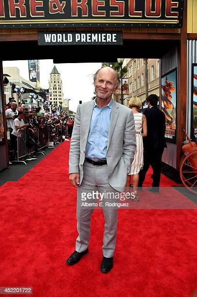 Actor Ed Harris attends World Premiere Of Disney's 'Planes Fire Rescue' at the El Capitan Theatre on July 15 2014 in Hollywood California