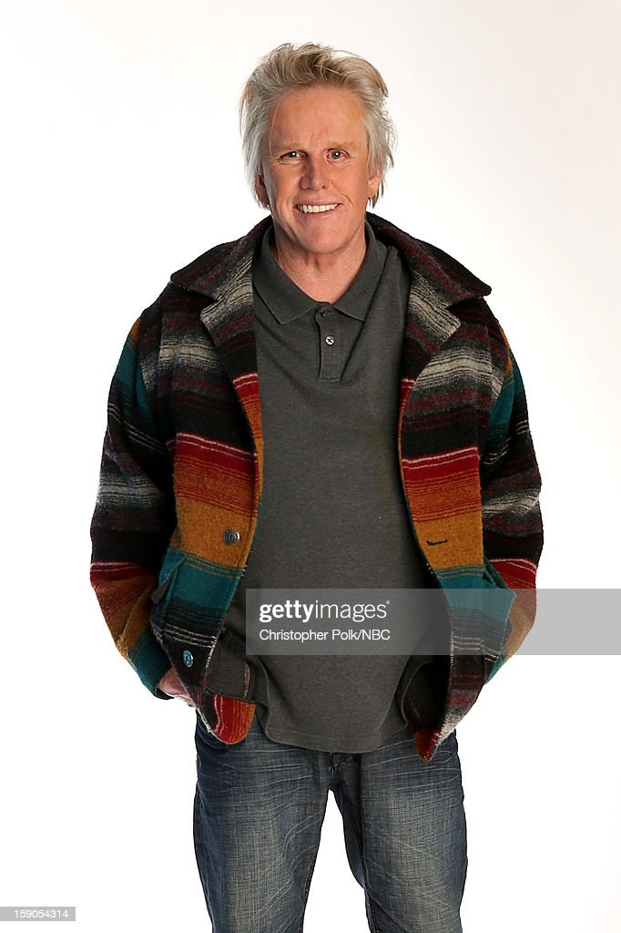 Actor Gary Busey attends the NBCUniversal 2013 TCA Winter Press Tour at The Langham Huntington Hotel and Spa on January 6, 2013 in Pasadena, California.