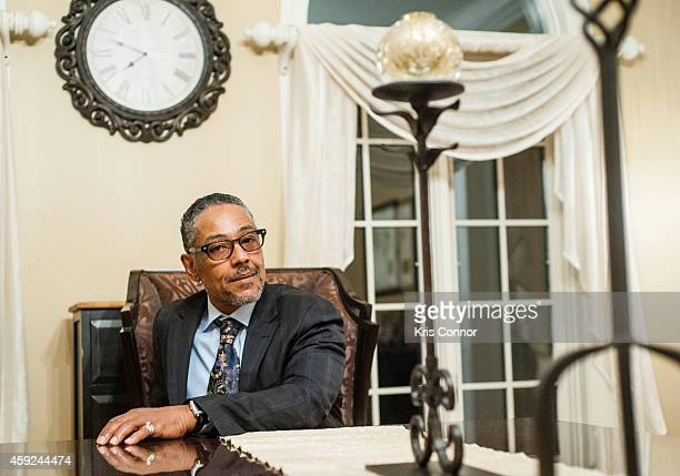 Actor Giancarlo Esposito poses for portraits on November 13 2014 in Potomac Maryland