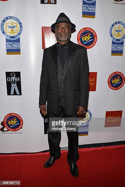 Actor Glynn Turman attends the 24th Annual NAACP Theatre Awards at Saban Theatre on November 17 2014 in Beverly Hills California