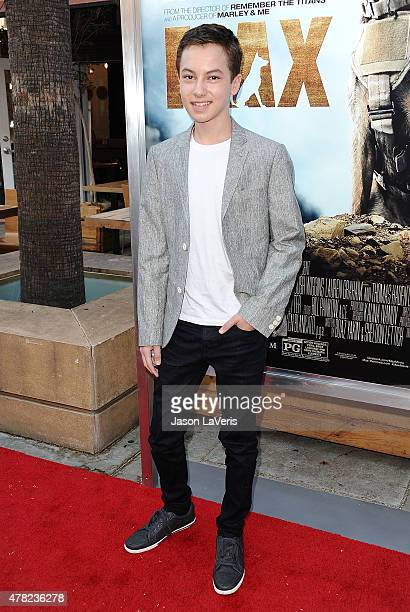 Actor Hayden Byerly attends the premiere of 'MAX' at the Egyptian Theatre on June 23 2015 in Hollywood California