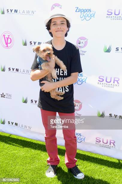 Actor Hunter Payton attends 2nd Annual World Dog Day at Vanderpump Dogs on June 25 2017 in Los Angeles California