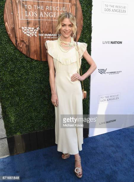 Actor Jaime King at The Humane Society of the United States' To the Rescue Los Angeles Gala at Paramount Studios on April 22 2017 in Hollywood...