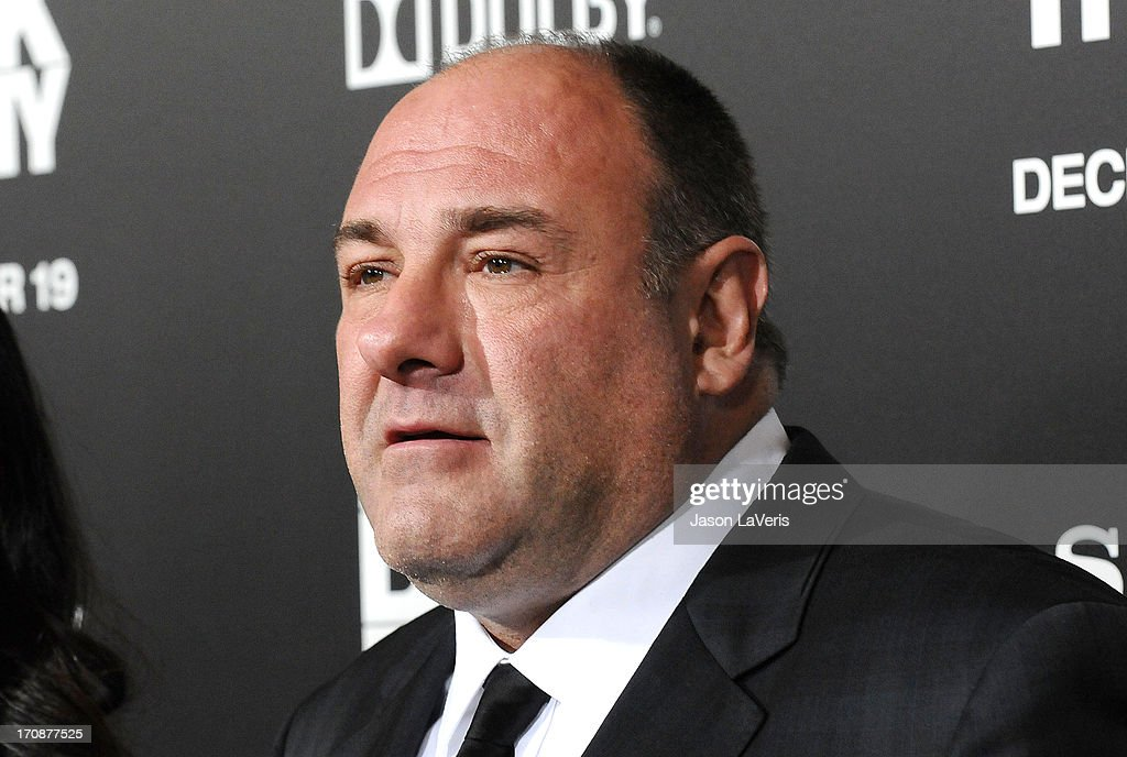 Actor James Gandolfini attends the premiere of 'Zero Dark Thirty' at the Dolby Theatre on December 10, 2012 in Hollywood, California.