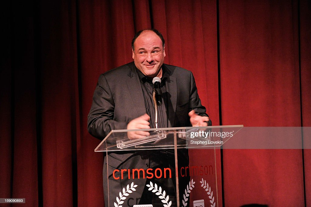 Actor <a gi-track='captionPersonalityLinkClicked' href=/galleries/search?phrase=James+Gandolfini&family=editorial&specificpeople=171463 ng-click='$event.stopPropagation()'>James Gandolfini</a> speaks onstage at the 2012 New York Film Critics Circle Awards at Crimson on January 7, 2013 in New York City.