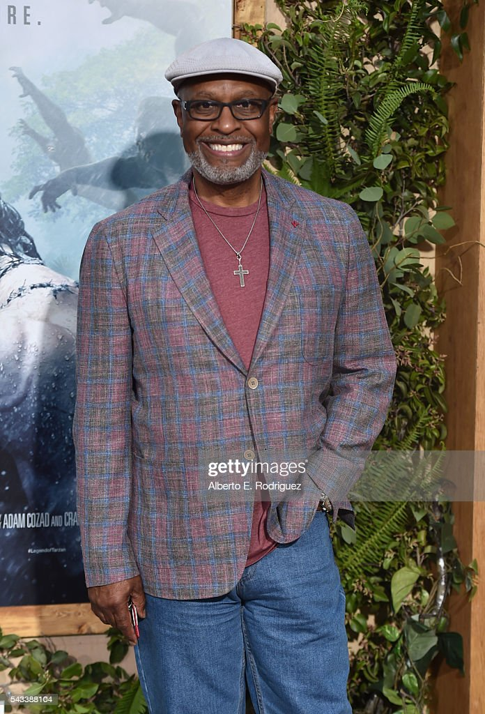 Actor <a gi-track='captionPersonalityLinkClicked' href=/galleries/search?phrase=James+Pickens+Jr.&family=editorial&specificpeople=572015 ng-click='$event.stopPropagation()'>James Pickens Jr.</a> attends the premiere of Warner Bros. Pictures' 'The Legend of Tarzan' at Dolby Theatre on June 27, 2016 in Hollywood, California.