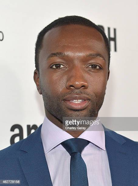 Actor Jamie Hector arrives for the red carpet premiere screening for Amazon's first original drama series 'Bosch' at ArcLight Cinemas Cinerama Dome...