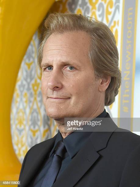 Actor Jeff Daniels attends the premiere of HBO's 'The Newsroom' Season 3 at the DGA Theater on November 4 2014 in Los Angeles California