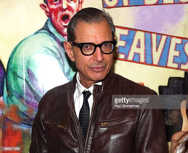 Actor Jeff Goldblum attends the 'Domesticated' Opening Night at Mitzi E Newhouse Theater on November 4 2013 in New York City