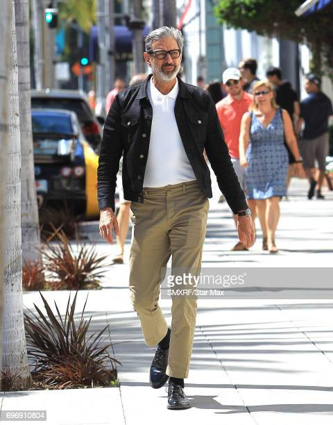 Actor Jeff Goldblum is seen on June 16 2017 in Los Angeles California