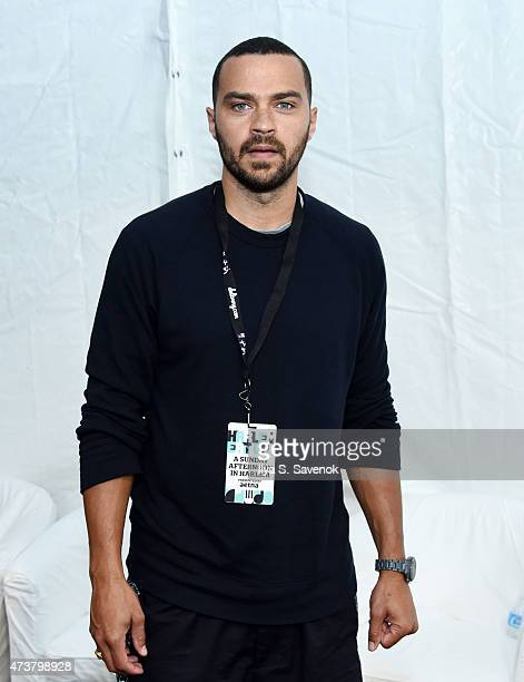Actor Jesse Williams attends a Sunday afternoon in Harlem presented by Aetna at Harlem EatUp Festival on May 17 2015 in New York City