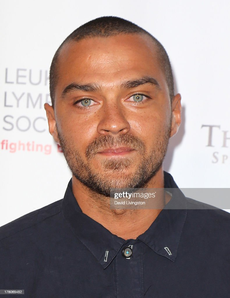 Actor <a gi-track='captionPersonalityLinkClicked' href=/galleries/search?phrase=Jesse+Williams+-+Actor&family=editorial&specificpeople=7189838 ng-click='$event.stopPropagation()'>Jesse Williams</a> attends the premiere of 'Snake & Mongoo$e' at the Egyptian Theatre on August 26, 2013 in Hollywood, California.