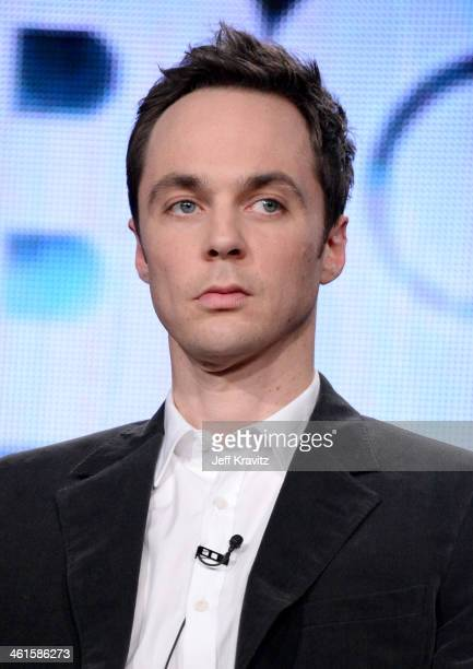 Actor Jim Parsons speaks onstage at the 'The Normal Heart' panel during the HBO Winter 2014 TCA Panel at The Langham Huntington Hotel and Spa on...