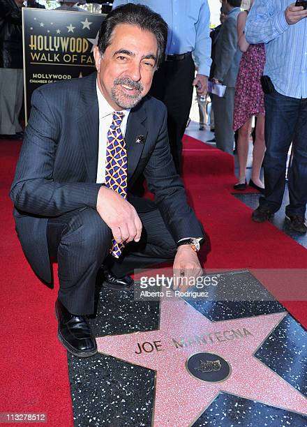 Actor Joe Mantegna attends a star ceremony honoring him with the 2438th star on the Hollywood Walk of Fame on April 29 2011 in Hollywood California