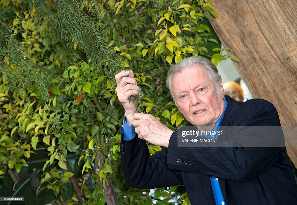 Actor Jon Voight attends the world premiere of 'The Legend of Tarzan' in Hollywood, California, on June 27, 2016. / AFP / VALERIE