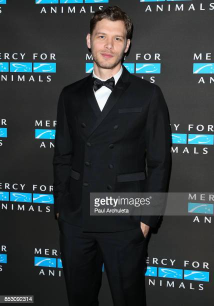 Actor Joseph Morgan attends the Mercy For Animals' Annual Hidden Heroes Gala at Vibiana on September 23 2017 in Los Angeles California