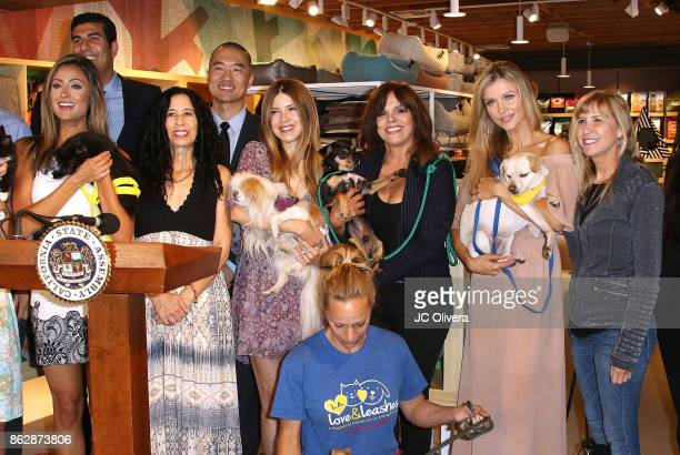 Actor Katie Cleary Matt Dababneh Judie Mancuso Andrew Kim Simone Reyes Jane VelezMitchell Joanna Krupa and guest attend a press conference...
