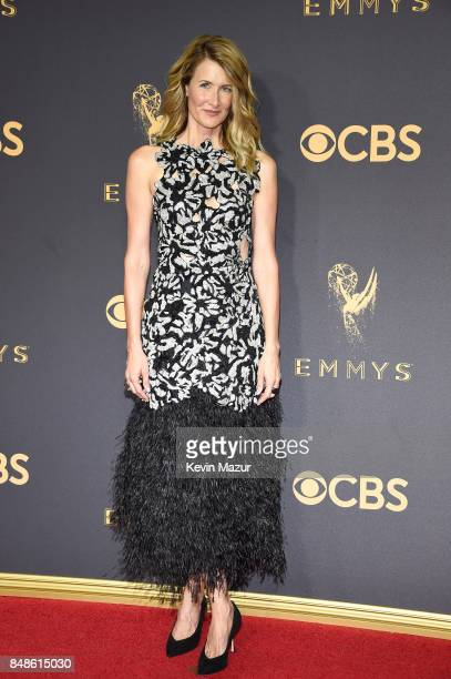 Actor Laura Dern attends the 69th Annual Primetime Emmy Awards at Microsoft Theater on September 17 2017 in Los Angeles California