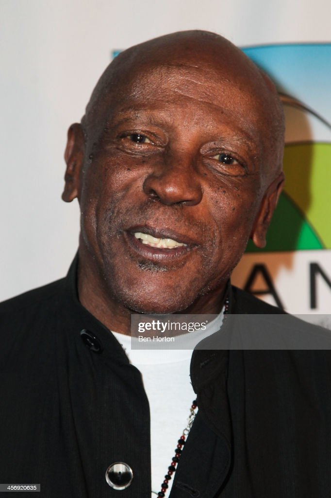 Actor Lou Gosset Jr. attends the Span Philippines Relief And Fusion Global Fundraiser at Malibu West Beach Club on December 15, 2013 in Malibu, California.