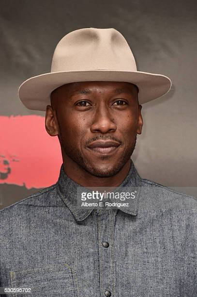 Actor Mahershala Ali attends the photo call for STX Entertainment's 'Free State Of Jones' at Four Seasons Hotel Los Angeles at Beverly Hills on May...