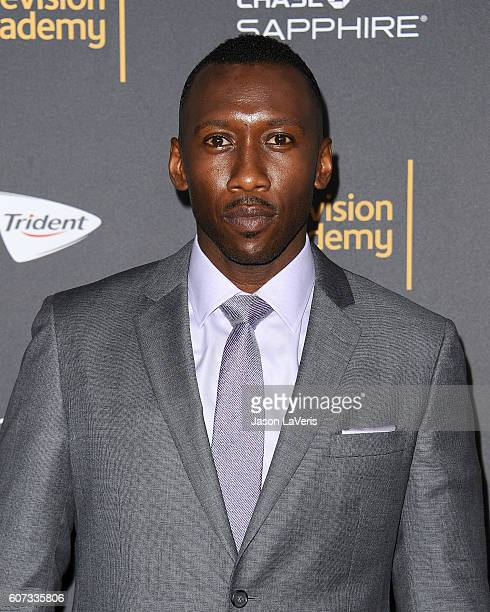 Actor Mahershala Ali attends the Television Academy reception for Emmy nominated performers at Pacific Design Center on September 16 2016 in West...