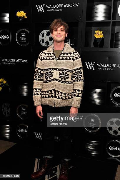 Actor Matthew Gray Gubler attends Waldorf Astoria Hosts 'Life After Beth' Cast Dinner at Sundance Film Festival on January 18 2014 in Park City Utah