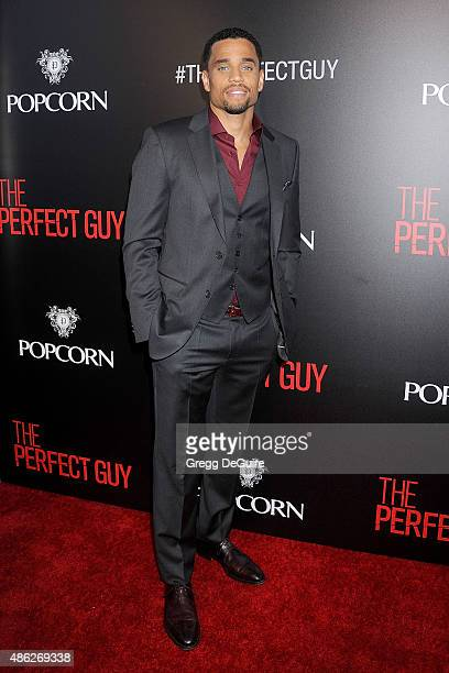 Actor Michael Ealy arrives at the premiere of Screen Gems' 'The Perfect Guy' at The WGA Theater on September 2 2015 in Beverly Hills California