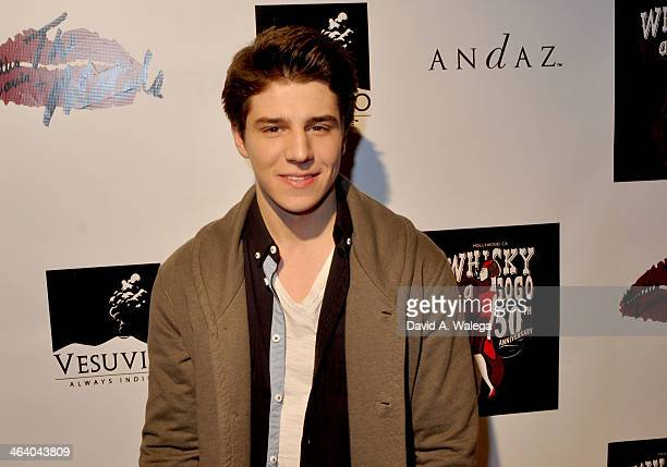 Actor Michael Grant arrives at the Martha Davis The Motels concert at Whisky a Go Go on January 19 2014 in West Hollywood California