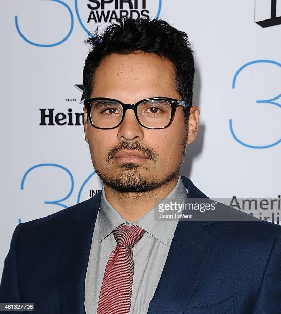 Actor Michael Pena attends the 2015 Film Independent filmmaker grant and Spirit Awards nominees brunch at BOA Steakhouse on January 10 2015 in West...