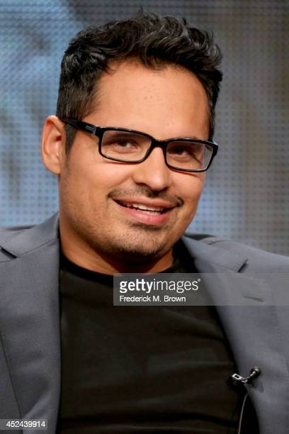 Actor Michael Pena speaks onstage at the 'Gracepoint' panel during the FOX Network portion of the 2014 Summer Television Critics Association at The...