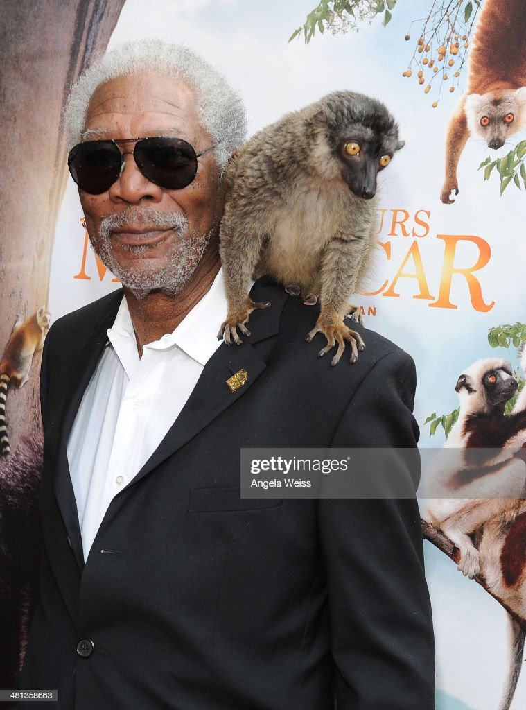 Actor <a gi-track='captionPersonalityLinkClicked' href=/galleries/search?phrase=Morgan+Freeman&family=editorial&specificpeople=169833 ng-click='$event.stopPropagation()'>Morgan Freeman</a> arrives at the Premiere Of Warner Bros. Pictures and IMAX Entertainment's 'Island Of Lemurs: Madagascar' at California Science Center on March 29, 2014 in Los Angeles, California.