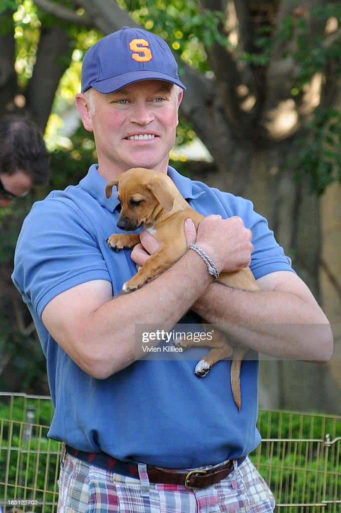 Actor <a gi-track='captionPersonalityLinkClicked' href=/galleries/search?phrase=Neal+McDonough&family=editorial&specificpeople=213199 ng-click='$event.stopPropagation()'>Neal McDonough</a> attends Posing Heroes, 'A Dog Day Afternoon' Benefiting A Wish For Animals - Inside on March 30, 2013 in Los Angeles, California.