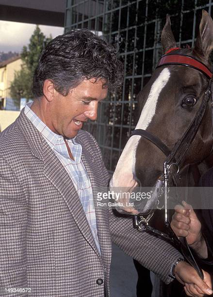 Actor Patrick Duffy attends the Second Annual Crown Royal Hollywood Charity Horse Show Press Reception on March 5 1991 at Ma Maison Restaurant Hotel...