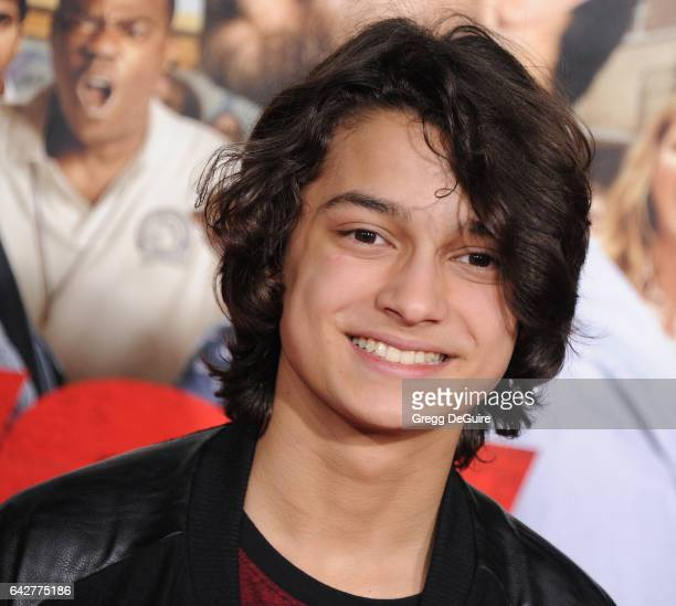 Actor Rio Mangini arrives at the premiere of Warner Bros Pictures' 'Fist Fight' at Regency Village Theatre on February 13 2017 in Westwood California