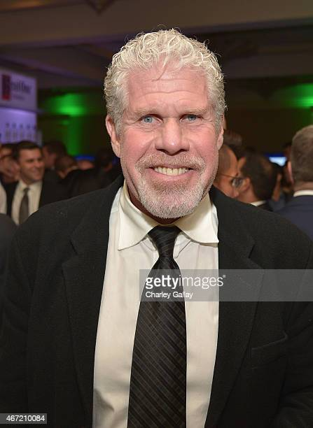 Actor Ron Perlman attends the after party for the 26th Annual GLAAD Media Awards at The Beverly Hilton Hotel on March 21 2015 in Beverly Hills...