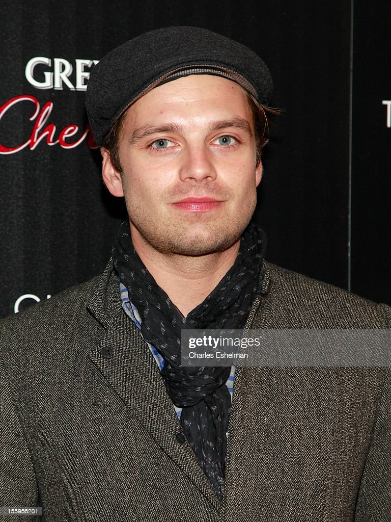 Actor <a gi-track='captionPersonalityLinkClicked' href=/galleries/search?phrase=Sebastian+Stan&family=editorial&specificpeople=656034 ng-click='$event.stopPropagation()'>Sebastian Stan</a> attends Gato Negro Films & The Cinema Society screening of 'Hotel Noir' at the Crosby Street Hotel on November 9, 2012 in New York City.