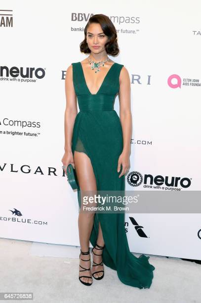 Actor Shanina Shaik attends the 25th Annual Elton John AIDS Foundation's Academy Awards Viewing Party at The City of West Hollywood Park on February...