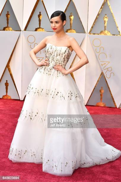 Actor Sofia Carson attends the 89th Annual Academy Awards at Hollywood Highland Center on February 26 2017 in Hollywood California