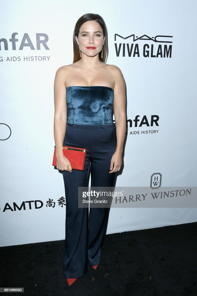 Actor Sophia Bush attends the amfAR Gala 2017 at Ron Burkle's Green Acres Estate on October 13, 2017 in Beverly Hills, California.