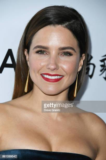Actor Sophia Bush attends the amfAR Gala 2017 at Ron Burkle's Green Acres Estate on October 13 2017 in Beverly Hills California