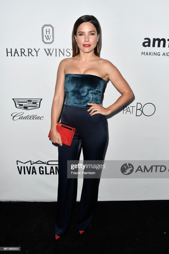 Actor Sophia Bush attends the amfAR Gala at Ron Burkle's Green Acres Estate on October 13, 2017 in Beverly Hills, California.