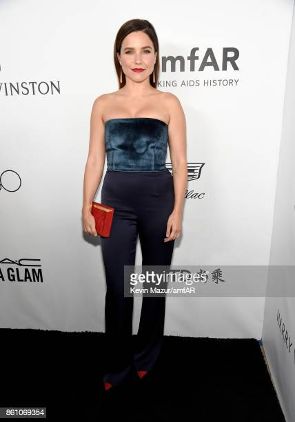Actor Sophia Bush attends the amfAR Gala Los Angeles 2017 at Ron Burkle's Green Acres Estate on October 13 2017 in Beverly Hills California