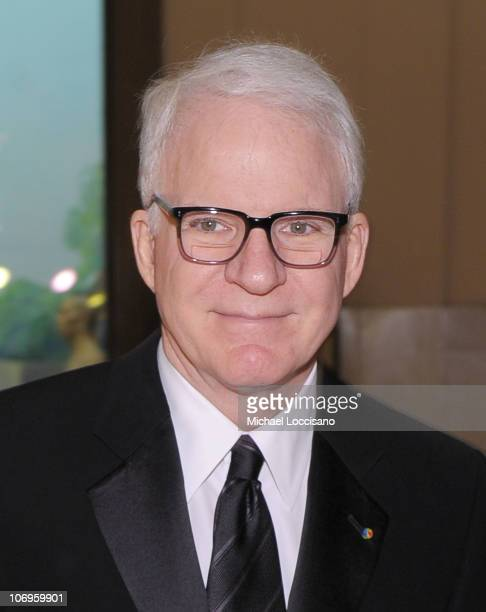 Actor Steve Martin attends the American Museum of Natural History's 2010 Museum Gala at the American Museum of Natural History on November 18 2010 in...